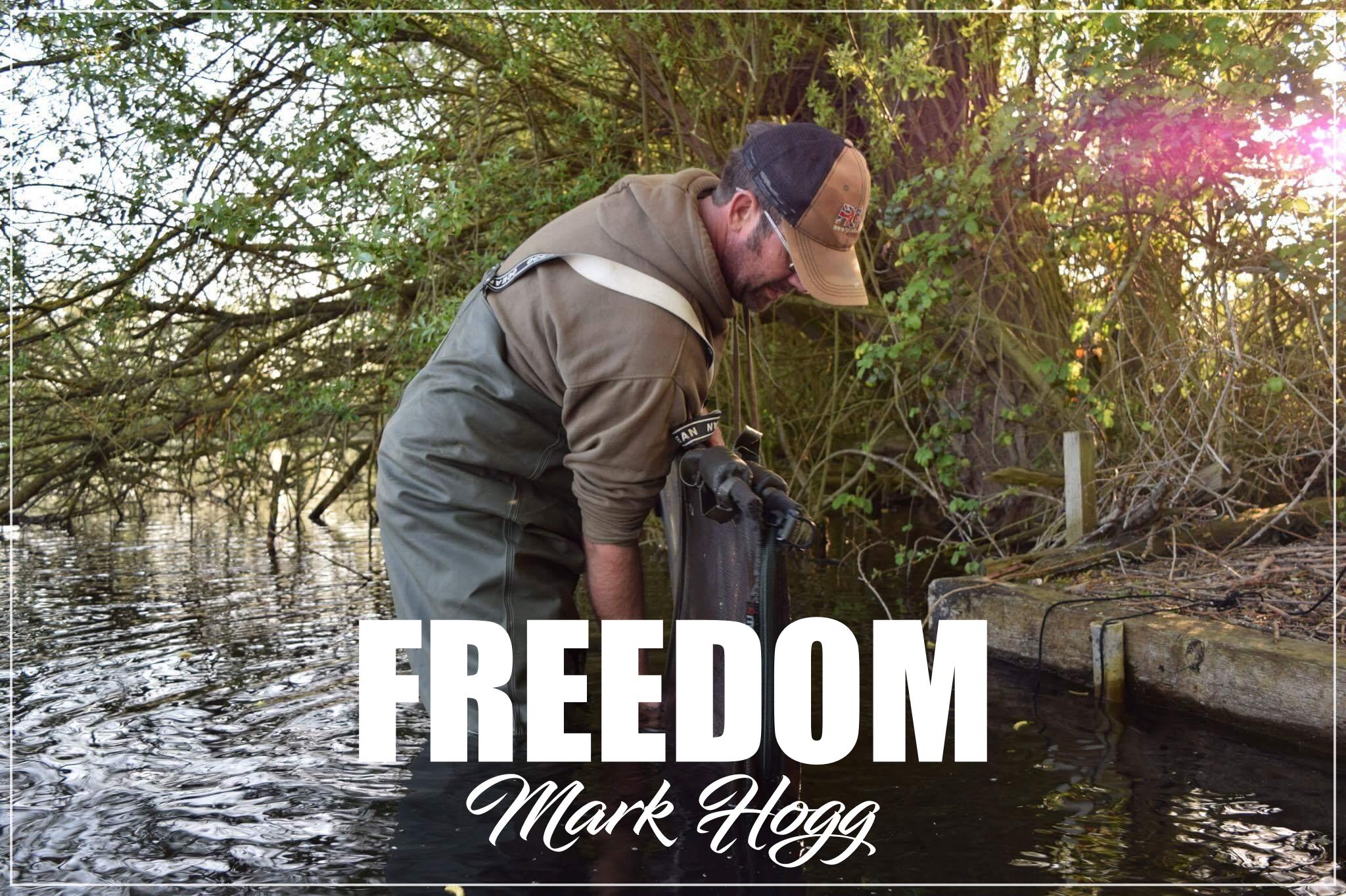 Freedom – Mark Hogg