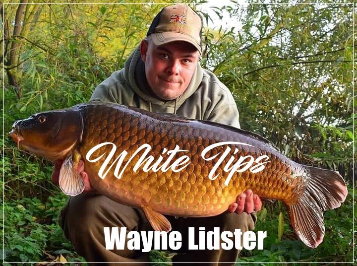 White Tips 2015 – Wayne Lidster