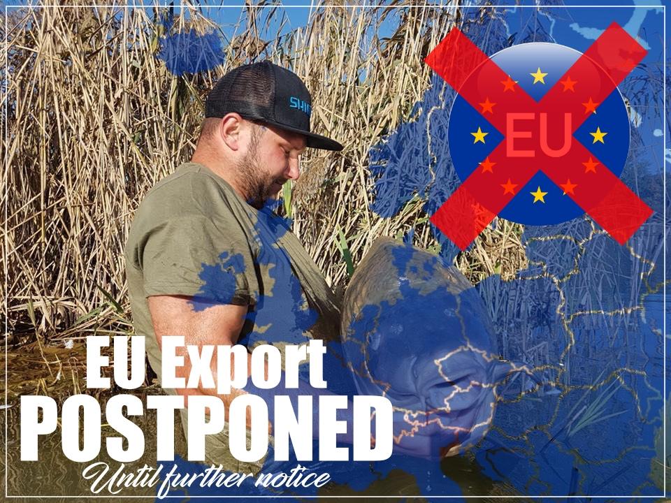 All EU Exports Postponed